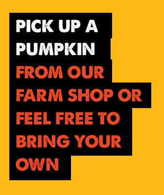 Pick Up a Pumpkin from our Farm Shop, Pumpkin Parlour