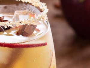 Cinnamon Spiced Appletini Cocktail