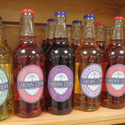 new products garden cider company bottles in row