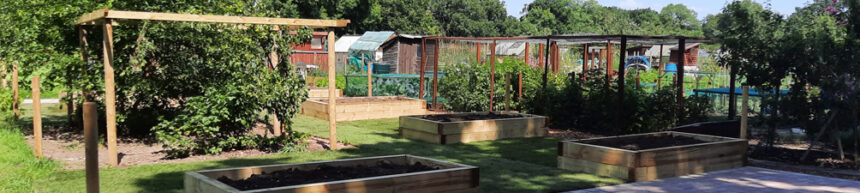 Allotment Improvements in the Local Community